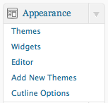 Theme Einstellungen bei Wordpress (Screenshot)